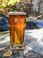 Craft Breweries Along the Great River Road