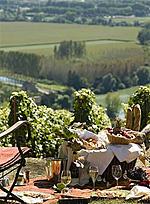 French Wine Explorers, Online