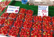norway_strawberries