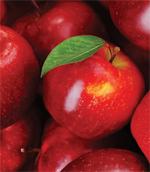 A November Apple Festival in Pennsylvania