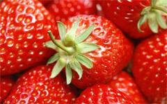 Alabama Strawberry Festival