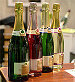 Salon des Vins Wine Fair