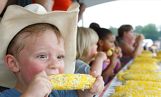 Corn Festival, Eden, New York