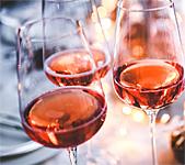 Stuttgart Wine Festival