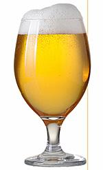 Taste Testing Beer and Chili Pairings