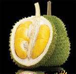 The Mighty King of Fruits – Durian
